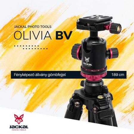 Jackal Olivia BV fényképező állvány gömbfejjel